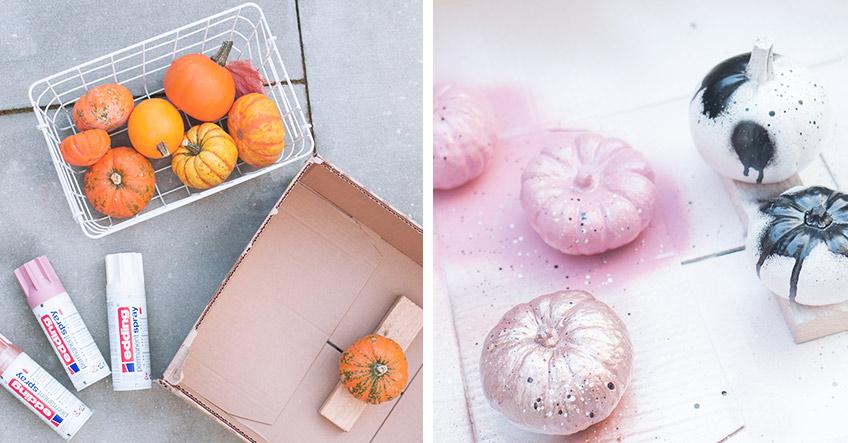 Zuckrig schöne Zierkürbisse als DIY-Deko für Halloween (c) delari.de