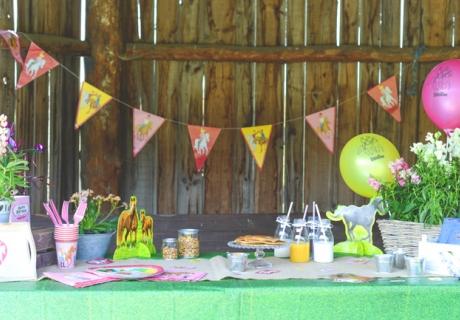 Eine rustikale Scheune macht sich perfekt für eure Bibi und Tina Geburtstagsparty